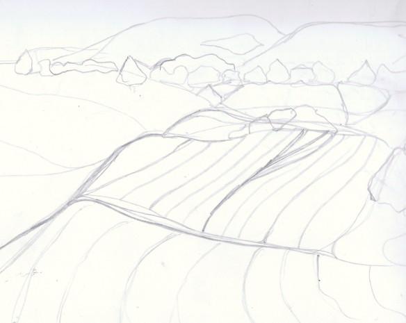 More fields near Sutrieu